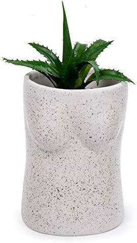 Truu Design CTG Abstract and Modern Ceramic Body Planter Vase, White