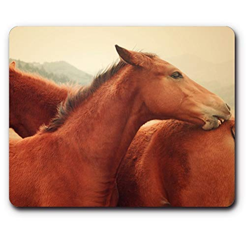 (Gaming Mouse pad mousemat Mouse pad,Horses,Game Office Mouse)