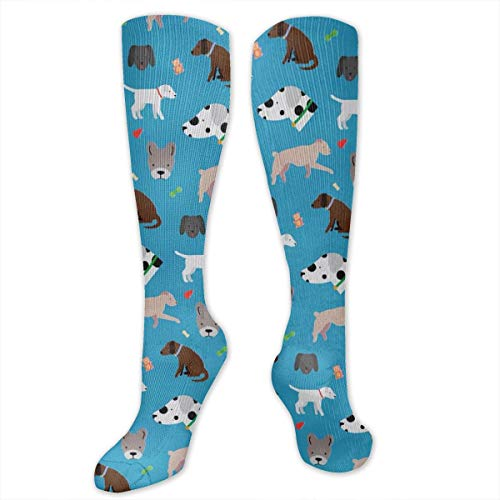 Unisex Crazy Fun Cool Cute Dog and Dog Face Colorful Athletic Sport Novelty Tube Socks -