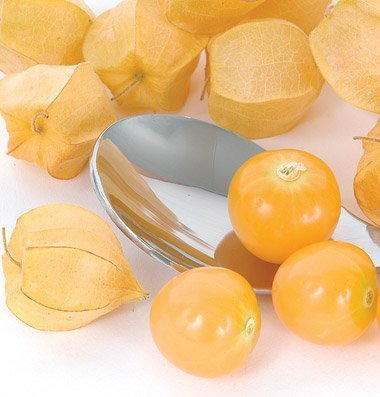 David's Garden Seeds Fruit Ground Cherry (Husk) Goldie D773TILLO (Yellow) 200 Organic Seeds