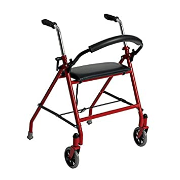 Amazon.com: Andador de dos ruedas con asiento, de Drive ...