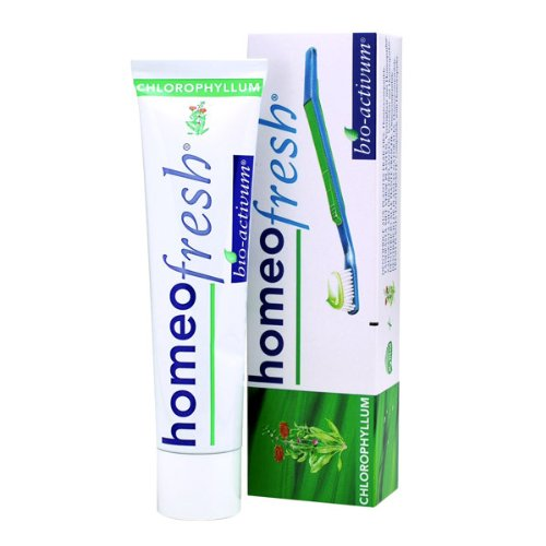 Chlorophyll Toothpaste 84g toothbrushes by Homeofresh