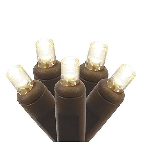 Vickerman 100 Count Single Mold Wide Angle LED Light Set-Brown Wire, Warm White