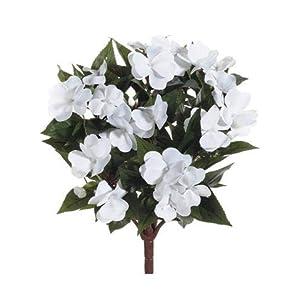 "White Silk New Guinea Impatiens Flower Bush - 13.5"" Tall 5"