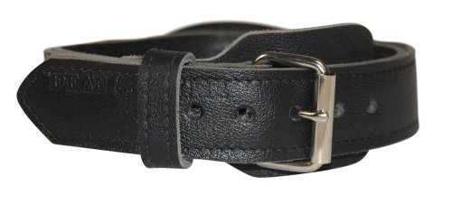 """Dean and Tyler """"SIMPLICITY"""", Leather Dog Collar with Chrome Plated Steel Hardware – Black – Size 38-Inch by 1-3/4-Inch – Fits Neck 36-Inch to 40-Inch"""