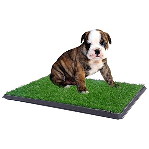 Potty Grass Pad Pet Trainer Indoor Dog Bathroom 30