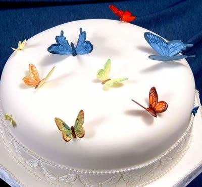 Buy patchwork cutters butterflies