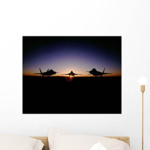 Silhouette F-22 Raptor Wall Mural by Wallmonkeys Peel for sale  Delivered anywhere in USA