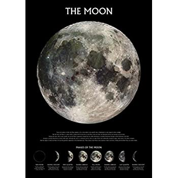 The Moon With Phases Poster 24 X 36in