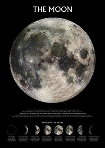 The Moon With Phases Poster