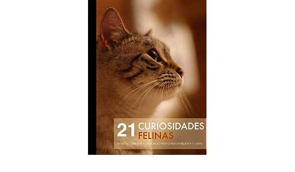 ... 21 datos curiosos y escenciales para conocer mejor a tu gato (Colección Todo sobre Gatos nº 1) (Spanish Edition) - Kindle edition by David Rueda.