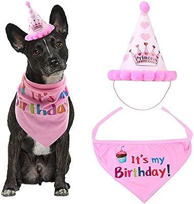 ASOCEA - Gorro de cumpleaños para Perro, Bandana para Mascota, Set ...