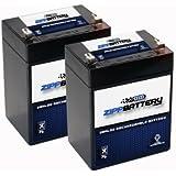 12V 2.9AH SLA Battery replaces UB2.9-12T HZS12-2.9 - 2PK