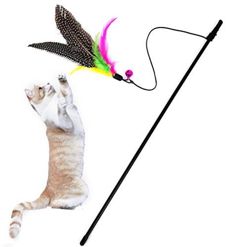 Kitten Cat Toy, Gotd Teaser Toy Rod with Bell and Feather (Multicolor)