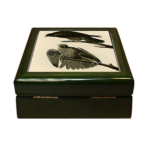 Style in Print Labrador Falcon (Audubon) 4