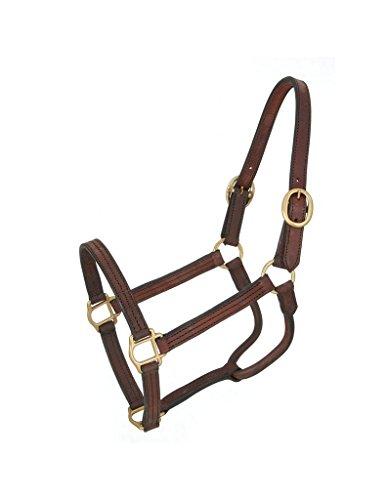 Royal King Leather Track Halter Pony