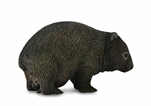 CollectA Wildlife Wombat Marsupial Toy Figure Authentic Hand Painted Model Reeves SG/_B01BX1LYCC/_US