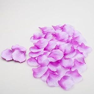 Wayhome Fair Silk Rose Petals Purple Two Tone 1,000 Petals - Excellent Home Decor - Indoor & Outdoor 103