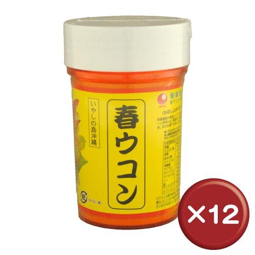 春ウコン粉 (容器入) 100g×10個 比嘉製茶 精油成分やクルクミン含有 美容健康維持におすすめの春ウコン B015HGMLBC 10個  10個