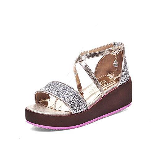 AgooLar Women's Open Toe Kitten Heels Assorted Color Buckle Sandals Silver