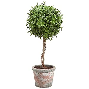 "SilksAreForever 18"" Tea Leaf Ball-Shaped Artificial Topiary Plant w/Terra Cotta Pot -Green (Pack of 2) 86"