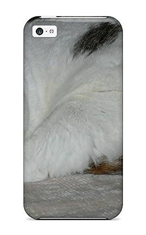 High Quality QNtLuJU25275pWmcx Munchkin Cats Tpu Case For Iphone 5c (Iphone 5c Speck Case Cheap)