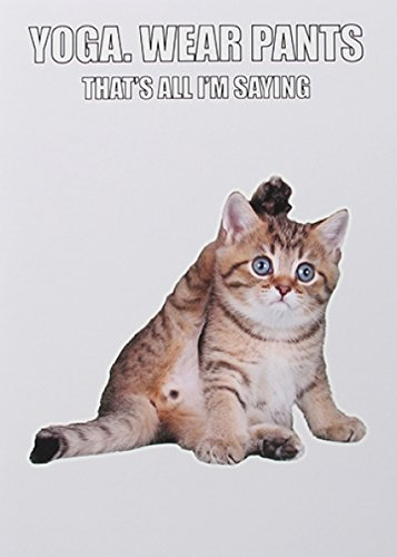 Humorous Greeting Card Yoga Plk1060 Cat Blankbirthday Life Goals