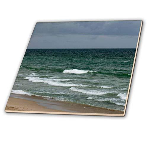 3dRose Susans Zoo Crew Photography - Stormy Florida Green Ocean - 6 Inch Ceramic Tile (ct_196208_2)