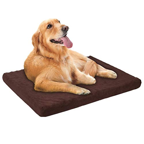 Townhouse Pet Bed Egg Crate Memory Foam Orthopedic Pet Bed with Water Proof top and Non-Slip Bottom,26x19x3in,Dark Coffee