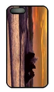 iPhone 5S Case - Customized Unique Design Ocean Waves 5 New Fashion PC Black Hard