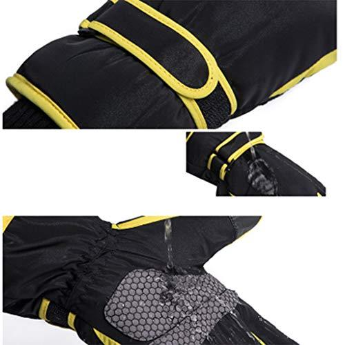 Leather Packs t Riding Pantalla bufanda Alpinismo Seasons Gardening Four Beanie guantes y xYTAq