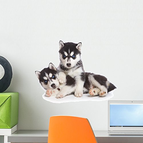 (Wallmonkeys Siberian Husky Puppy White Wall Decal Peel and Stick Graphic (18 in W x 12 in H) WM134838)