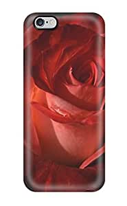 Amberlyn Bradshaw Farley's Shop Fashion Case Cover For Iphone 6 Plus(red Rose 2)
