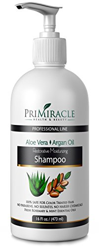 [Natural Restorative Moisturizing Shampoo With Aloe Vera and Argan Oil for All Hair types. Works great for colored hair.] (Nanoworks Restorative Treatment)