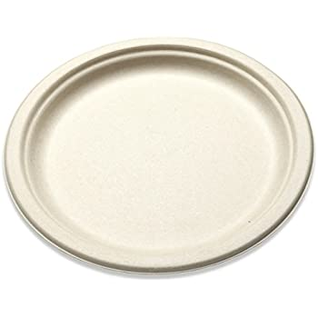 Disposable Paper Plate Wheat Straw Square Dinner Plates 8 ... |Wheat Paper Plates