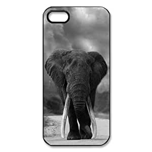 Stylish Hot Custom Elephant Pattern TPU+PC Case Cover for Apple iphone AT&T / Verizon 5 5g 5gs