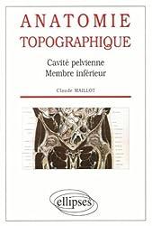 Anatomie topographique : Cavité pelvienne, membres inférieurs