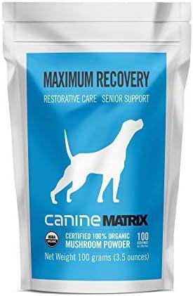 Canine Matrix Organic Mushroom Supplement for Dogs, Maximum Recovery, 100 gm