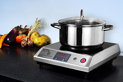 Cake Recipes In Induction Stove: 12.63″ Electric Induction Cooktop With 1 Burner
