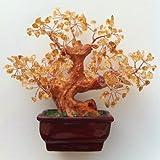 "Top Hunter Approx. 6.8"" Natural Citrine Quartz Gem Stone Money Tree"