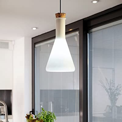 Lightinthebox 60w Contemporary Pendant Light with Glass Shade in Flask Design, Modern Home Ceiling Light Fixture Flush Mount, Pendant Light Chandeliers Lighting