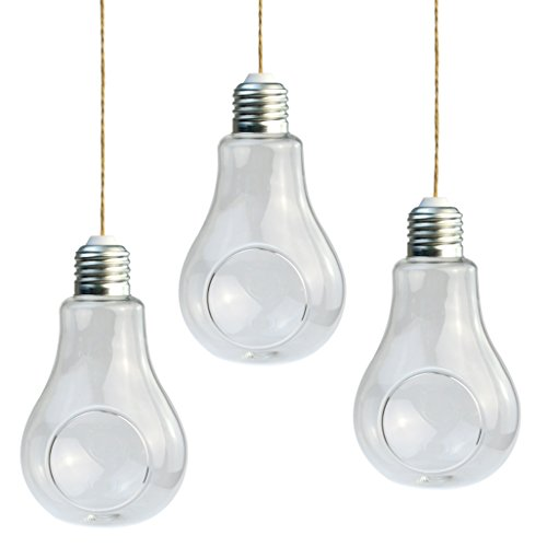 Cnomg 3 Pcs Light Bulb Hanging Planter Terrarium Glass Vase Small