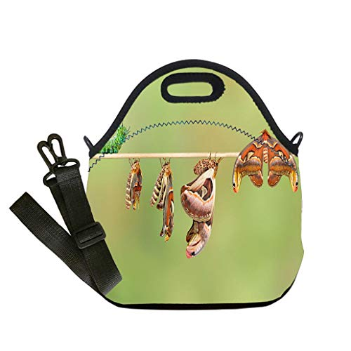 Insulated Lunch Bag, Reusable Outdoor Travel Picnic School Life cycle of attacus atlas moth Lunch Bag- Insulated and Reusable Artful Design