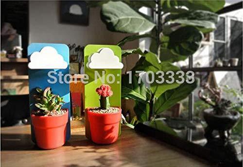 Pots Vases - Wholesale 1200pcs Lot Cloud Rainy Pot Wall Hung Plant Flower Vase Yard Home Decoration Decor - Indoor Planter Bonsai Design Pot Flower Creative Lot Vase Apple ()