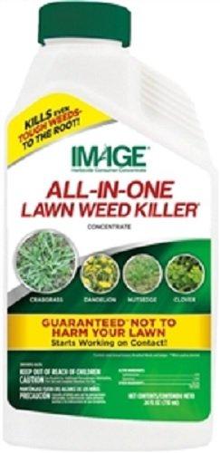 Amazon.com : CENTRAL GARDEN & PET(AMBRANDS) 100523495 All-N-1 Killer ...