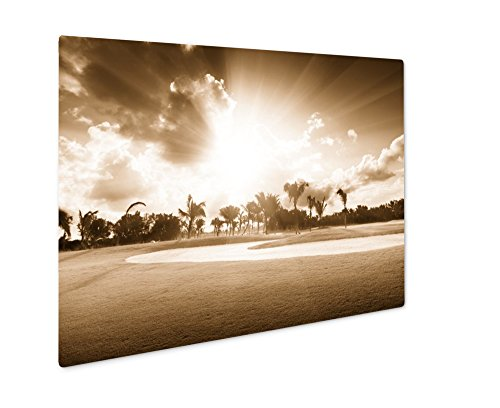 Ashley Giclee Sunset On Golf Field, Wall Art Photo Print On Metal Panel, Sepia, 24x30, Floating Frame, AG4948192