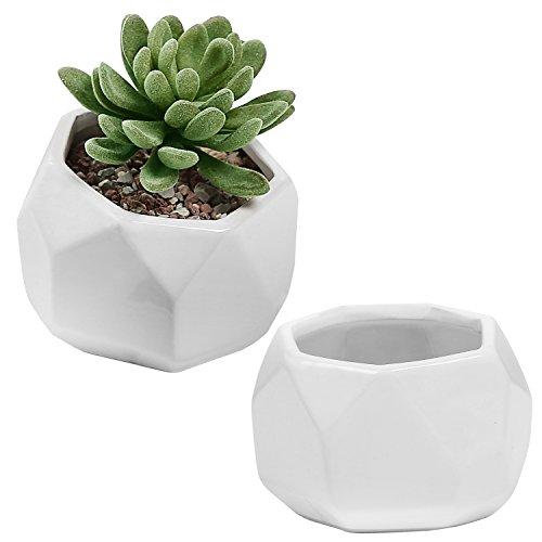 White Ceramic Faceted Miniature Succulent Planters, 3-inch Slanted Top Cacti Pots, Set of 2 Miniature Planter