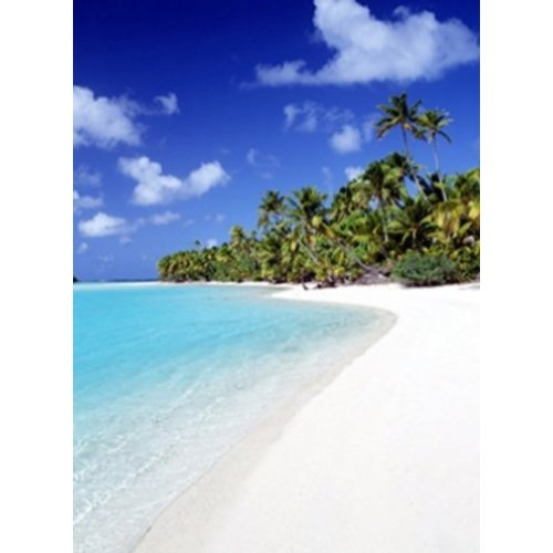 Buyartforless Palm Hideaway Tropical Beach Retreat 36x24 Photograph Art Print Poster Relaxing White Sand Dunes Coastal Beach (Retreat Tropical)