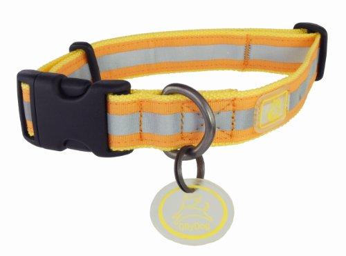 OllyDog Nightlife II Collar, Medium, Yellow/Orange, My Pet Supplies