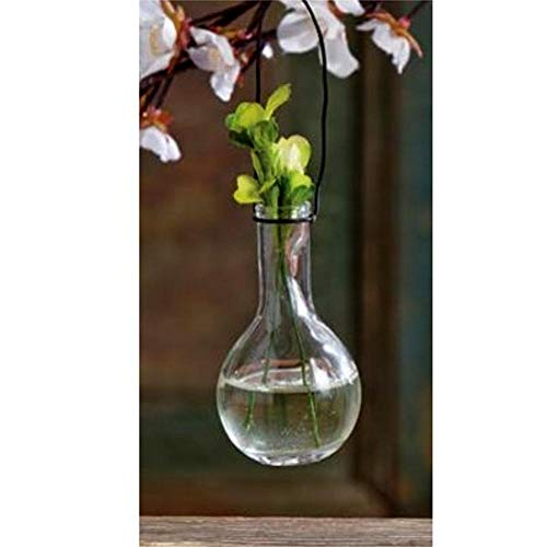 Tag Clear Glass Hanging Floral Bud Vase Rounded Ball Base Set of 6